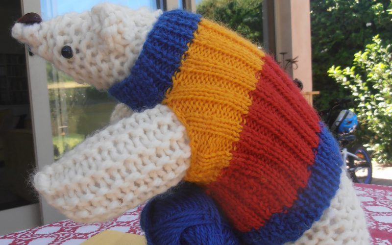 How to knit a penguin jumper (whether they need it or not)